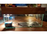 Reptile Tank with heat lamp and heat mat