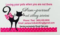 Pam-purred cat sitting and pet services in Royal Oak area!