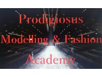 Modelling Courses, Modelling Opportunities & Modelling Competitions. No experience required