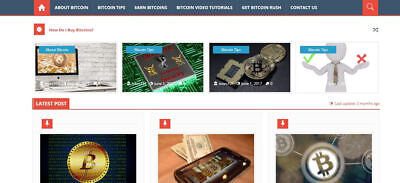 Btc Wordpress Blog With Own E-product - Readymade Blog -make Money Online