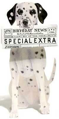 Dalmatian Birthday Card 3d Shaped Card