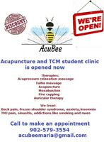 Acupuncture and TCM student clinic