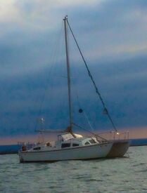 Heavenly Twin Catamaran boat for sale /livaboard mooring avai