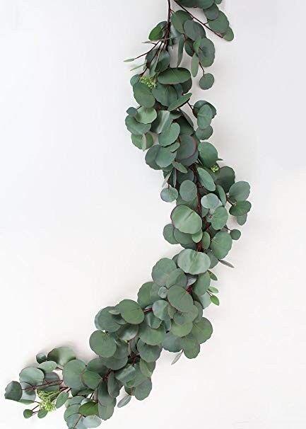 Silver Dollar Eucalyptus Garland / Grower Direct / Quality Guaranteed