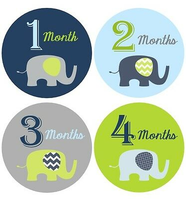 Monthly Baby Sticker Boy, Milestone Stickers, Month Stickers, Elephants- #29