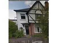 Available mid Oct - Fantastic location! - spacious 5 bed house in Stranmillis near QUB/Cutters