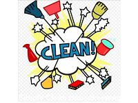 Domestic house Cleaner / ironing services