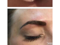 Semi Permanent Makeup Micropigmentation 'tattoo' Eyebrows
