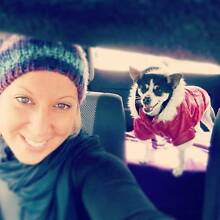 Professional & Experenced NSW House/Pet Sitter! Sydney City Inner Sydney Preview