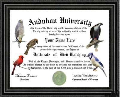 Bird Watching Lover's Doctorate Diploma / Degree Custom made & Designed for you