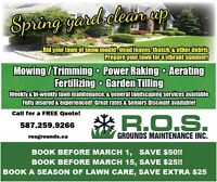 Spring Lawn Cleanup... Save $!