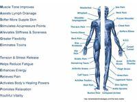 Deep Tissue Sports Massage - Home visits