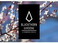 Blackthorn Gardens LLP