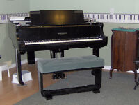 Piano Lessons - Stoney Creek mountain