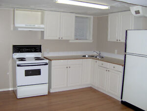 Lower level suite in great central location
