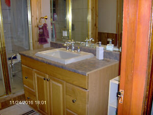 Country Home in Harrow- Privacy Galore! Windsor Region Ontario image 2