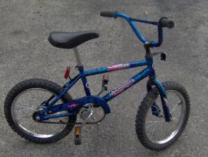 Boys Mountain Tour Bike
