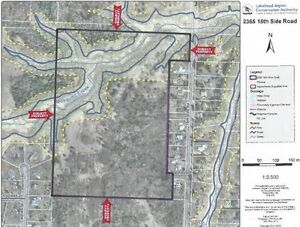 44 ACRES WITHIN CITY LIMITS