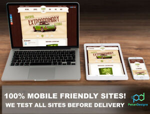 Professional Web Design and Development At a Low Price / Cost