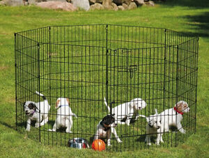 Looking for Dog Crate/Pen