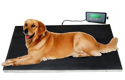 New 660lb 37 X 20 Veterinary Scale Digital Platform Floor Vet Alpaca Dog Llama