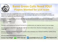 Barnt Green Colts U14's PLAYERS WANTED