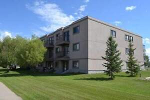 FALL SPECIAL! 1 Bedroom From $600 - Newly Renovated Blue...