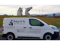 Dog Walker, Dog Walking Services including Small Pet and Equine care