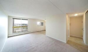 1 bedroom special! In Walking Distance to Southgate Mall... Edmonton Edmonton Area image 12