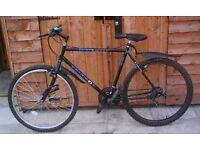 Ladies/Teenagers Hybrid Bike for Tarmac or Off-Road