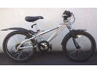 "Kids 20"" Wheel Mountain Bike, Plus Extra Accessories, 7-10 yrs"