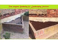 Tree surgeon, Landscaping Services & Gardening
