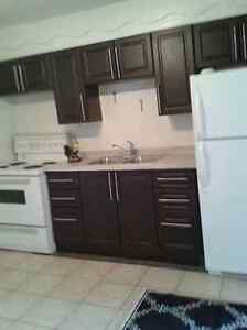 NEW KITCHEN CABINETS,SEPARATE ENTRANCE,HARDWOOD,CLOSE TO LINC