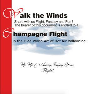 SunDance Balloons Hot Air Balloon Ride for 2 + champagne