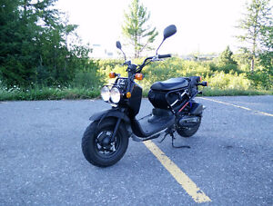2011 Honda ruckus low mileage