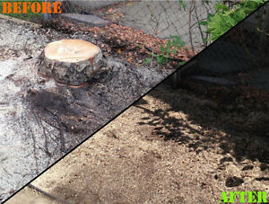 Green Stake Landscaping | All Your Yard Needs Edmonton Edmonton Area image 7