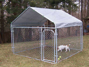 Looking for a kennel