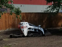 BOBCAT SERVICE  micro machine 36 inches $80 and stump removal