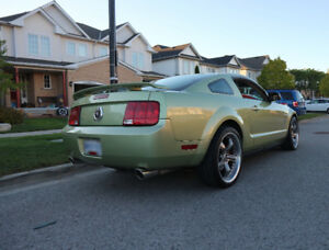 CLEAN 06 Mustang (thousands in upgrades)