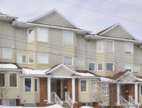 9-1400 Wildberry Crt in Orleans