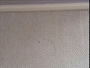 Professional Cleaning Carpet,Couch & Mattress - JnC Services Sarnia Sarnia Area image 8