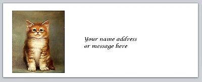 Personalized Address Labels Cute Kitten Cat Buy 3 Get 1 Free Bx 15
