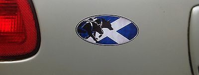 SLED DOG SPIRIT SCOTTISH TEAM HUSKY ALASKAN MALAMUTE STICKER DECAL SCOTLAND SIBE
