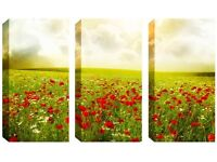 3 Panel Canvas -Stunning Poppy Field - Reduced from £70.00 to clear BRAND NEW