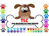 Dog walking/pet sitting /home dog boarding