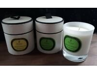 2 Large New Parks of London Aromatherapy Candles - Lime, Basil, Mandarin and Lemongrass, Mint