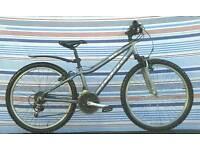 Ridgeback MX lightweight bike