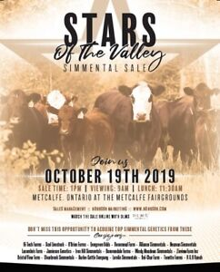 Ottawa Valley Simmental Club, Stars of the Valley Simmental Sale