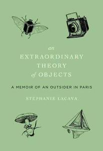 An Extraordinary Theory of Objects von Stephanie LaCava (2013, Gebunden)