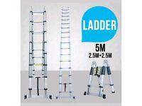 Aluminium 5 Metres Extendable Foldable Travel DIY Ladder
